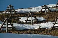 Skier Cross in St. Johann
