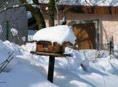 Tiroler Winterbilanz übertrifft Prognosen