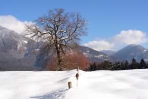 Viele Wintersportarten sind hier möglich