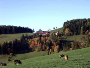 /resources/preview/103/tirol-urlaub-auf-dem-bauernhof.jpg